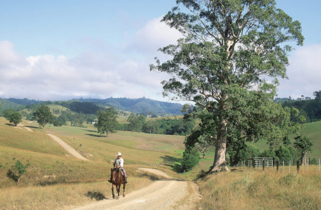 Man on horseback in rural landscape, New South Wales, Australia
