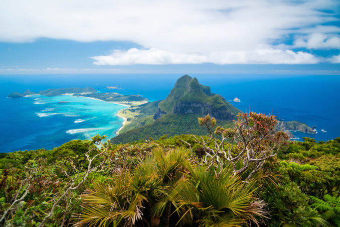 View north over Lord Howe Island, New South Wales, Australia, from the summit of Mt Gower the highest point on the island.