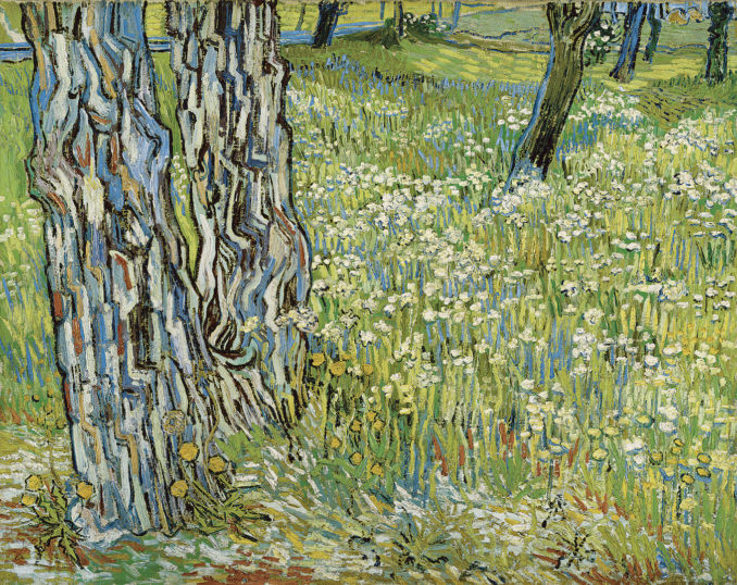 NGV Vincent Van Gogh in Van Gogh and the Seasons THE F 4
