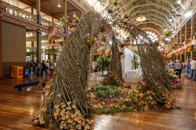 Melbourne S International Flower Garden Show Was Bloomin