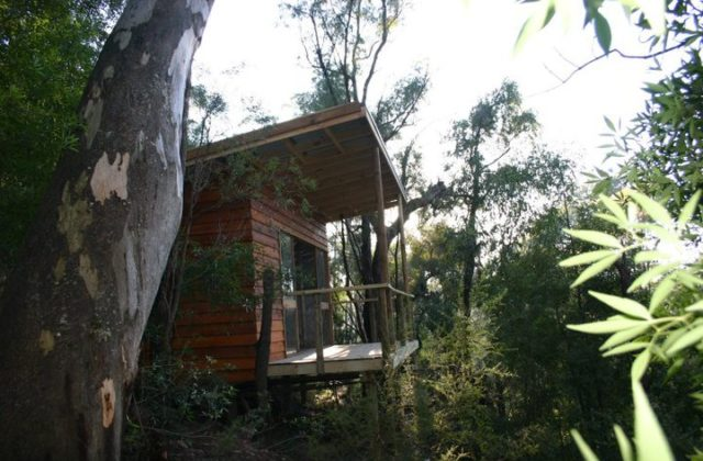 Billabong Retreat Sydney cabin THE F
