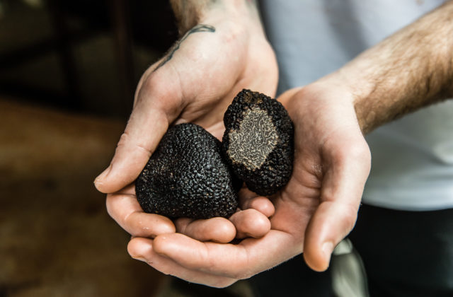 Jamies Italian restaurant Sydney truffles