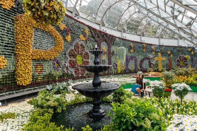 Sydney Calyx Royal botanic Gardens fountain
