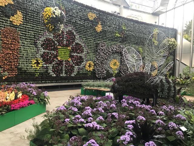 Sydney Calyx Royal botanic Gardens garden
