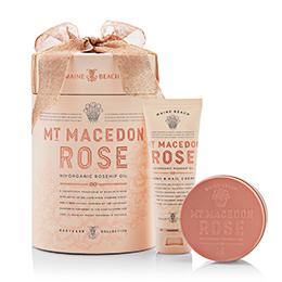 Maine Beach Mt Macedon Rose