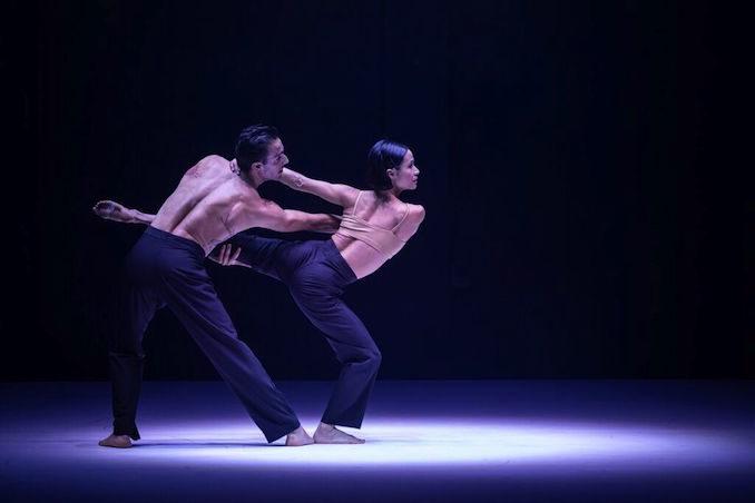 ab intra Sydney Dance Company 2