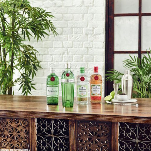 Tanqueray gin bottles alcohol